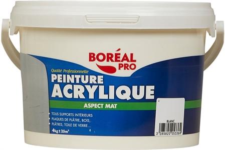 Boreal Pro Peinture Acrylique Murs Et Plafonds Mat Test Complet